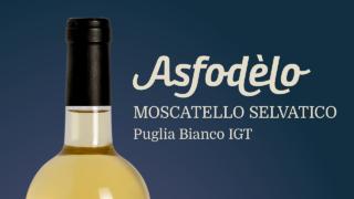 asfodelo 3
